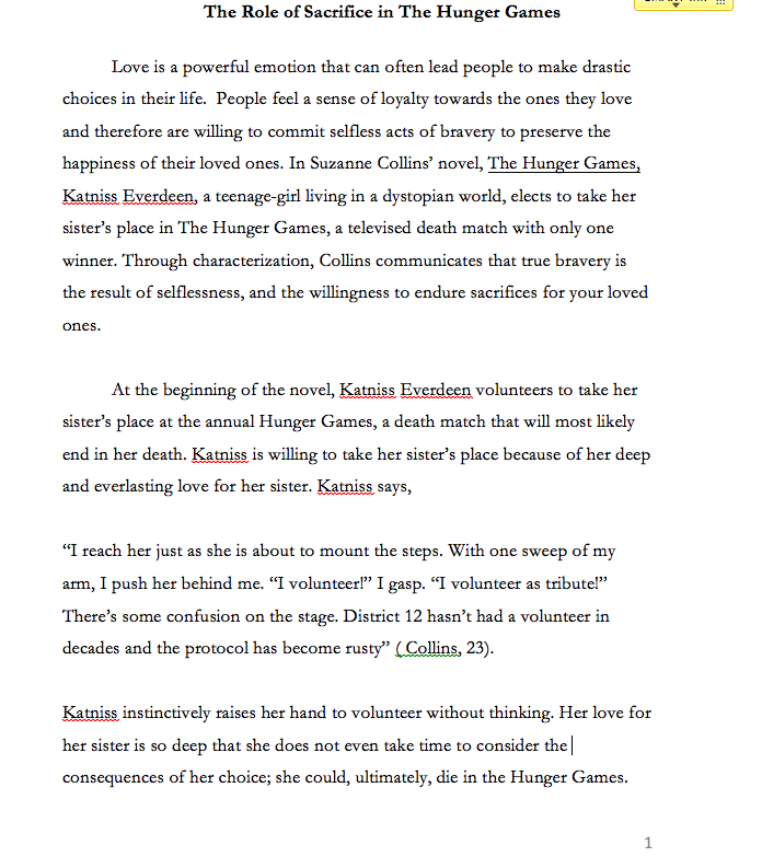 Sample thematic essay the hunger games